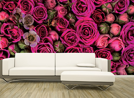 Image of a printed wall graphic of flowers hung behind a coach